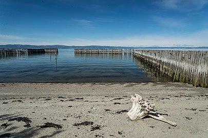 Trondheimsfjorden tre 1.jpg