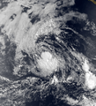 Tropical Storm Darby 1980.png