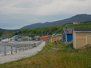 Trout River, Newfoundland and Labrador Town in Newfoundland and Labrador, Canada