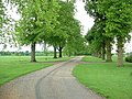 Tusmore Park - geograph.org.uk - 436203.jpg