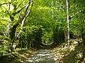 Twyn Road, north of Abercarn - geograph.org.uk - 423399.jpg