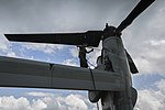 US Marines complete two months of support to Ebola Response in West Africa 141202-M-PA636-026.jpg
