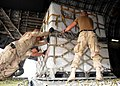US Navy 090109-N-1120L-075 Seabees and Air Force airmen maneuver 463L pallets into an Air Force C-17 aircraft.jpg