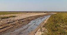 Uniek door eb en vloed steeds wisselend kweldergebied. Locatie, Noarderleech Provincie Friesland 48.jpg