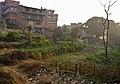 Urban agriculture (12679114933).jpg