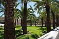VIEW , ®'s - DiDi - RM - Ð 6K - ┼ , MADRID PARQUE de PEÑUELAS JARDÍN - panoramio (158).jpg