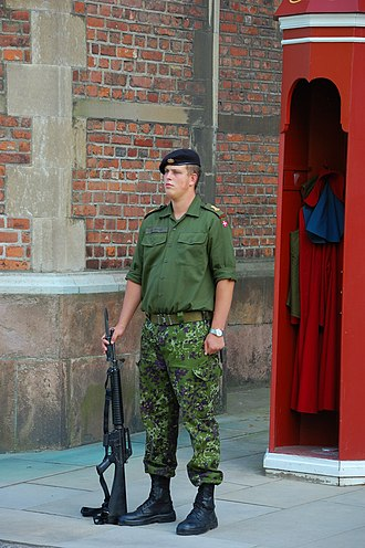 Danish Defence - Conscript from Royal Life Guards standing guard at Rosenborg Castle