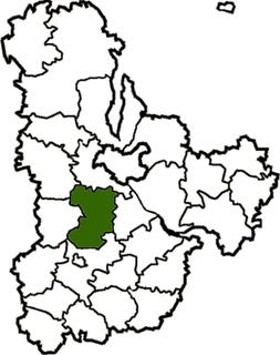 Vasylkiv Raion Former subdivision of Kyiv Oblast, Ukraine