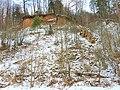 Verknės skardžiai ir Ožkų pečius - panoramio.jpg