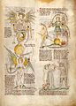 Verses on the personification of the seven deadly sins Wellcome L0029326.jpg