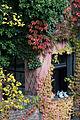 Vienna - Hundertwasser housing complex - 0438.jpg