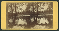 View of Mirror Lake and Reflections, from Robert N. Dennis collection of stereoscopic views.png