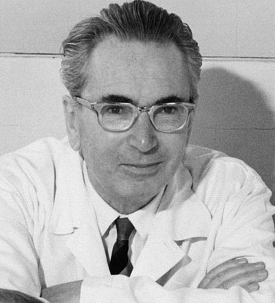 Picture of an author: Viktor Frankl