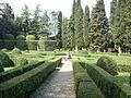 Villa schifanoia, giardino 05.JPG