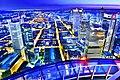 Vue depuis la Main Tower en Heure Bleue.jpg