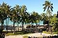 Waikiki Beach (15452930867).jpg
