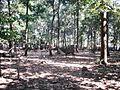 Walayar Deer Park - panoramio (1).jpg