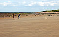 Walking the dogs on Boulmer beach - geograph.org.uk - 1381137.jpg