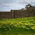 Wall - panoramio - Stephen Edmonds.jpg