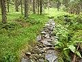 Wanderweg, Zwercheck.jpg