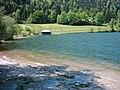 Wanderweg um den Schliersee Südwestkehre - panoramio.jpg