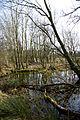 Waterleiding Duinen (16613782162).jpg