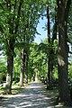 Westfriedhof Ahlen.1.nnw.jpg