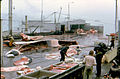 Whale processing, Iceland, June 1974-2.jpg