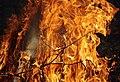 Wraxall 2013 MMB 60 Bonfire.jpg