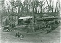Yinnar South Grants Saw Mill 1908.jpg
