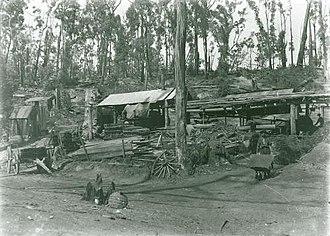 Yinnar South, Victoria - Grants Saw Mill, 1908