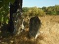Бар Нове єврейське кладовище 17.jpg