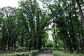 Виноградів, парк культури та відпочинку.jpg