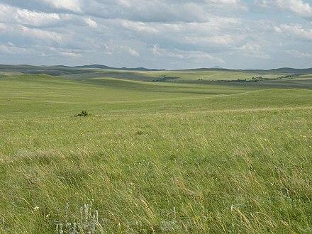 steppes - Photo