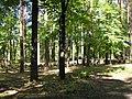 Максатиха, парк Maksatikha, 2009 - panoramio.jpg