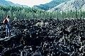 Окинское плато (Бурятия, Россия).jpg