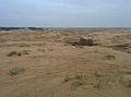 Олешківські піски восени.jpg