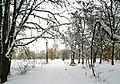 Парк Муромець взимку.jpg