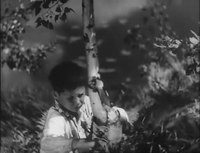 File:Полесские робинзоны (1934) фильм.webm