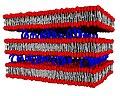 Схематичне зображення ліпоплексу.JPG