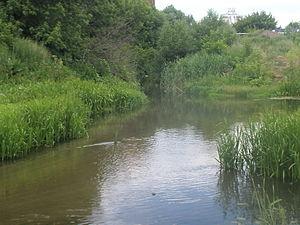 Kur River (Kursk Oblast) - The mouth of Kur