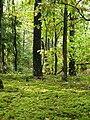 Фото путешествия по Беларуси 723.jpg