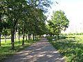 Холм Славы - panoramio (1).jpg