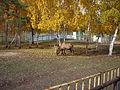 Якутский зоопарк 26.JPG