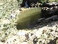 شلال في قلعة بنى سلامة ابن خلدون تاوغازوت بلدية فرندة ولاية تيارت.jpg