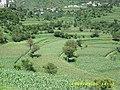 صورة لقرية رباط الغيثي على بعد - panoramio.jpg