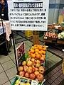 熊本・南阿蘇 降灰リンゴ支援事業 2016 (30737404182).jpg