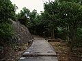 状元岭登山道 - Zhuangyuan Ridge Trail - 2014.08 - panoramio (1).jpg