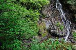 白岩の滝 - panoramio (28).jpg
