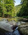 -006 Naturschutzgebiete in Thüringen Schwarzatal 159.jpg